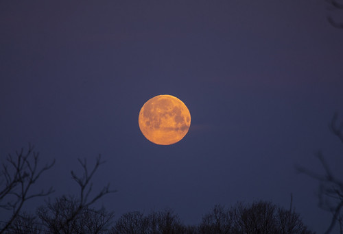 spring springtime march beautiful earlyspring life moon astronomy nature landscape peaceful goodmorning monday fullmoon canon 2020