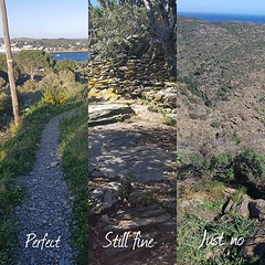 This weekend's first #lesson was that I need a path to follow. It doesn't have to be wide but it has to be there. I don't deal with it well if I don't know where the trail is when I'm #hiking. I need the basics. Does it say anything about me, I wonder? Do
