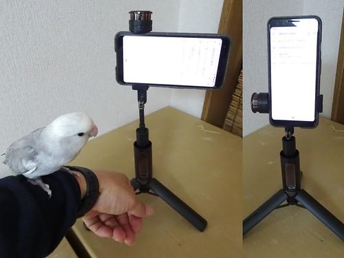 180度回転 Velbon (ベルボン) Coleman 高級スマホ自撮りスタンド Selfie MultiStand Black スマホ三脚 8段 Bluetooth ワイヤレスリモコン付属 302618
