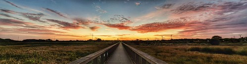 oblong panoimages5 panoramic panorama sunrise cloudporn cloudsonfire clouds skypainter sky skycandy walkway pixel3xl
