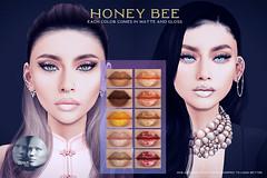 Voodoo Honeybee Genus