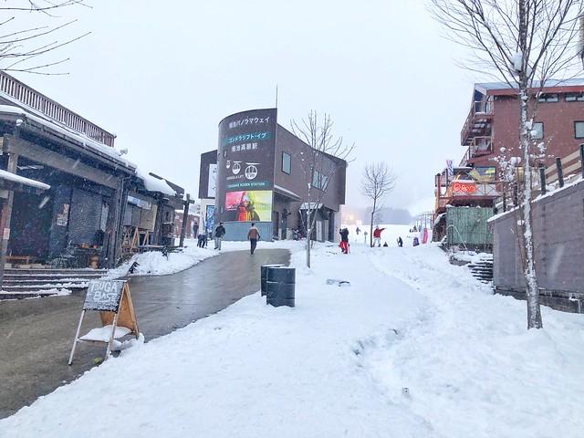 TsugaikeKogen Ski Resort,栂池高原スキー場