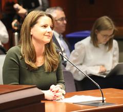 Carpino GAE Committee testimony