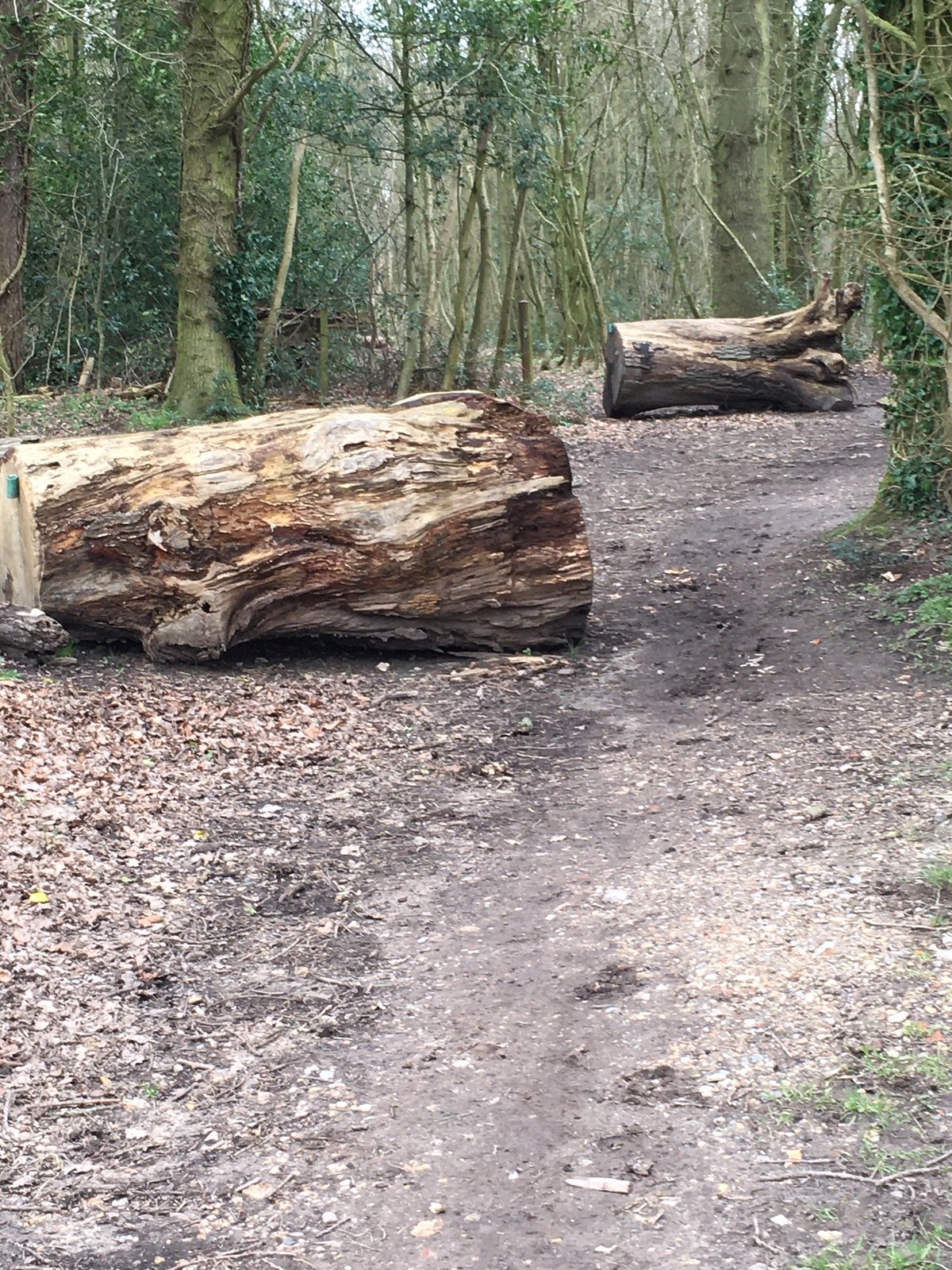 Big Logs Goring Circular via Hill Bottom