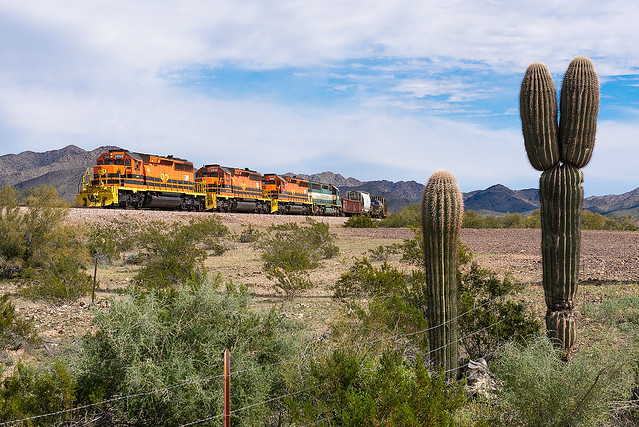 Saguaros and the A&C