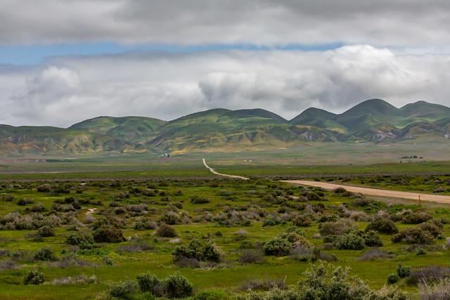 Carrizo Plain 2010 15