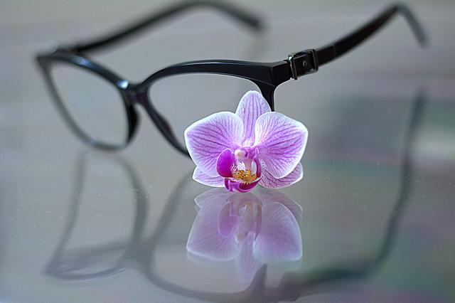 my glasses Jimmy CHOO