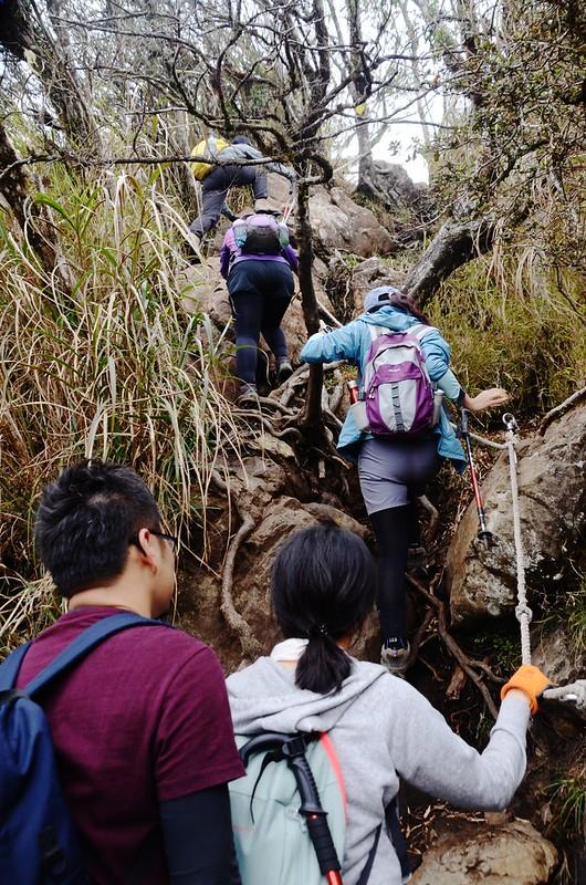 加里山拉繩陡登路段 (8)