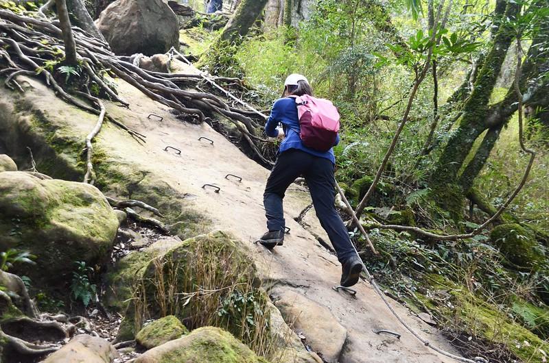 加里山拉繩陡登路段 (1)