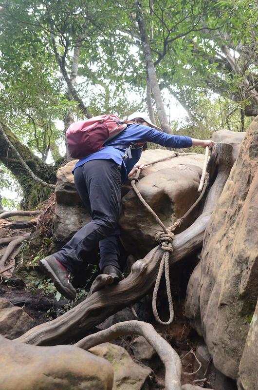 加里山拉繩陡登路段 (2)
