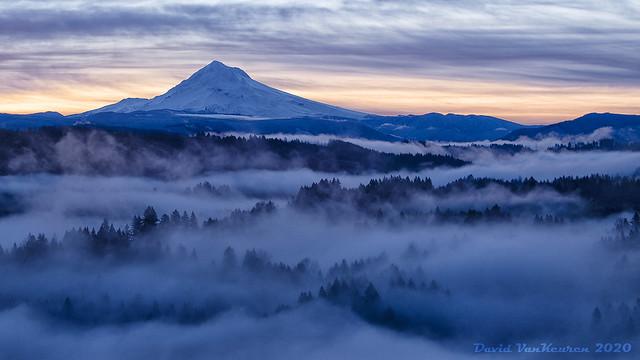 Dawn Fog and Mt. Hood