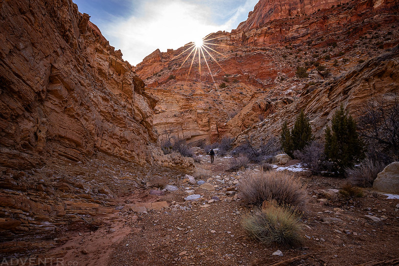 Canyon Sunstar