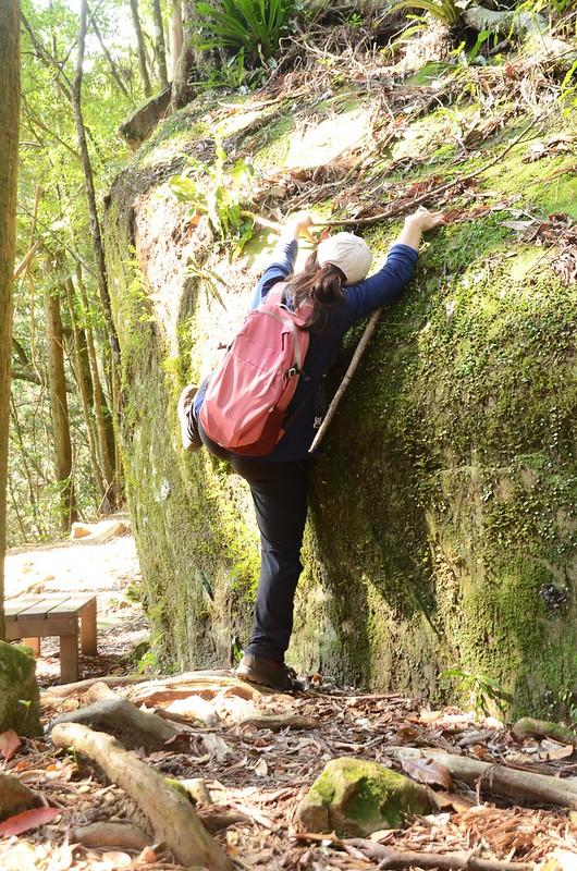 登山步道旁巨石 (1)