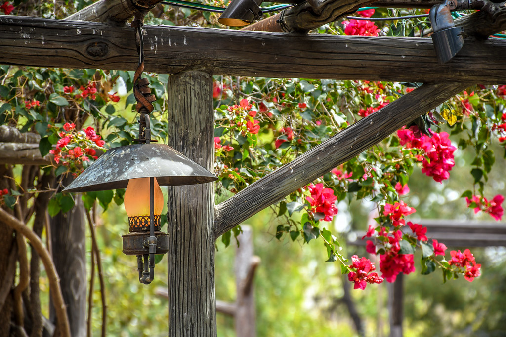 Pink flowers Rancho del Zocalo lamp DL