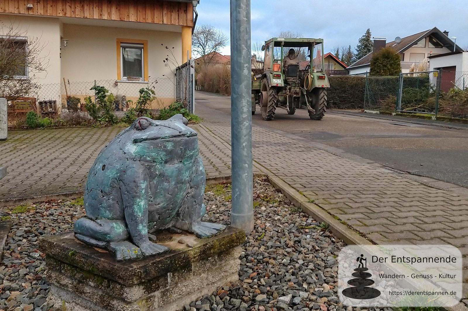 Frosch in Selzen am Radweg über Bergstraße, ehemalige Bahnstrecke Alzey-Bodenheim (Amiche)