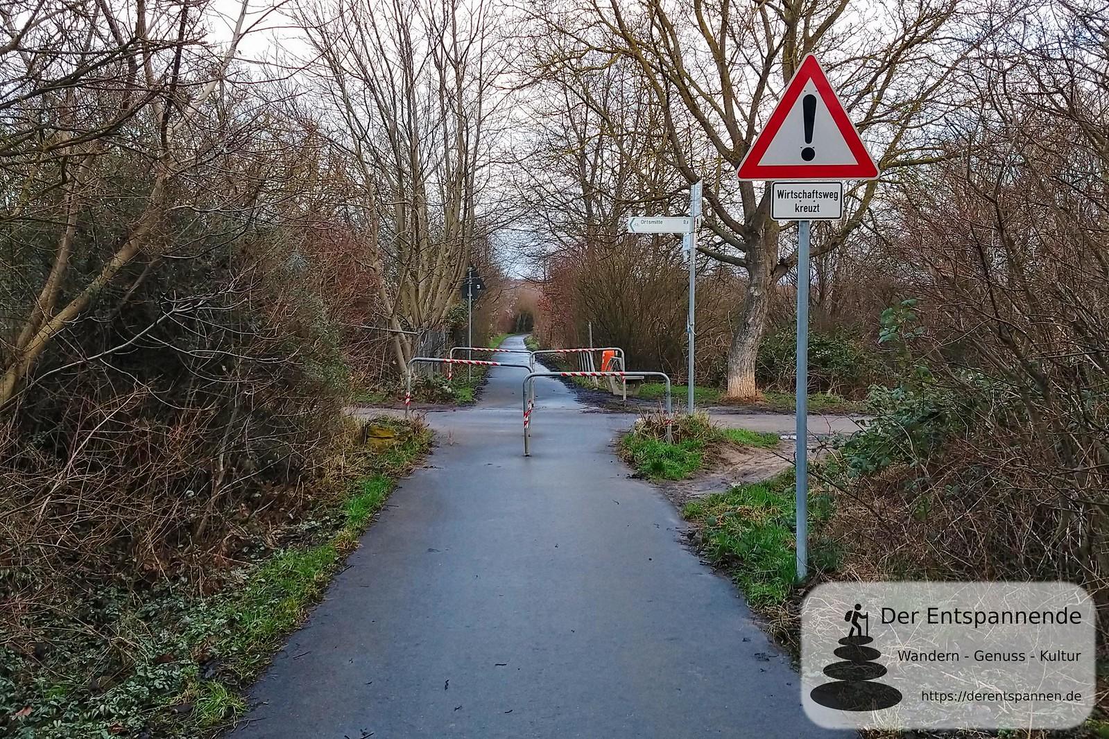 Bei Mommenheim auf dem Radweg von Selzen nach Mommenheim, ehemalige Bahnstrecke Alzey-Bodenheim (Amiche)