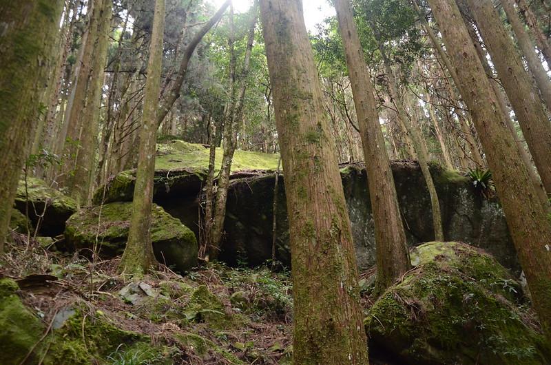 登山步道旁巨石 (2)