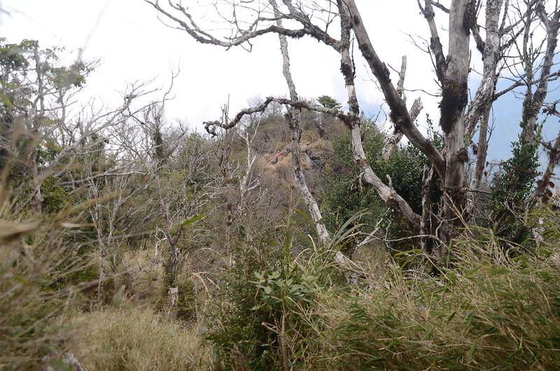 加里山岩頂觀景點