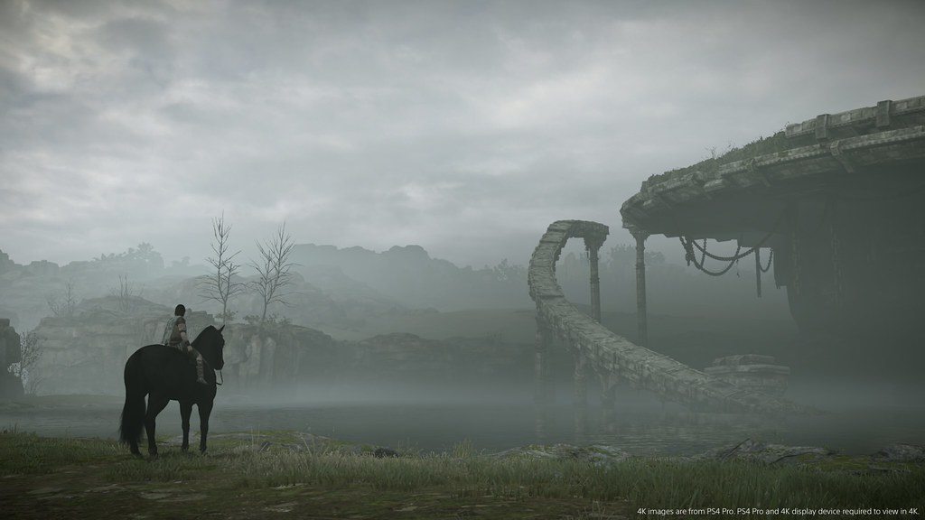 49643532186 6fb1a99b23 b - Shadow of the Colossus – Warum das Remake so fesselnd ist