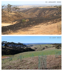 Kangaroo Island Fires Before and After 02