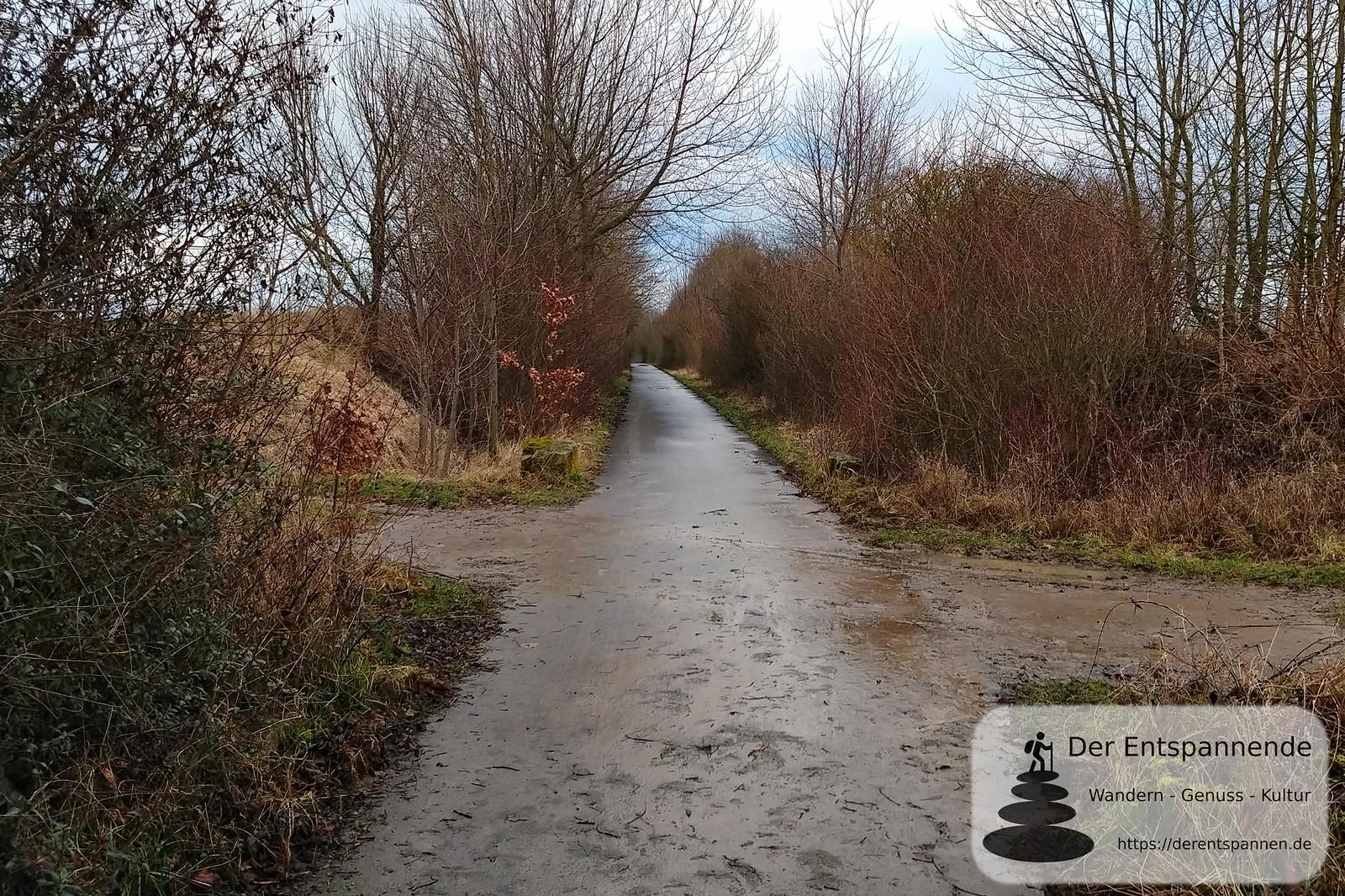 Halbe Strecke auf dem Radweg zwischen Selzen und Mommenheim, ehemalige Bahnstrecke Alzey-Bodenheim (Amiche)