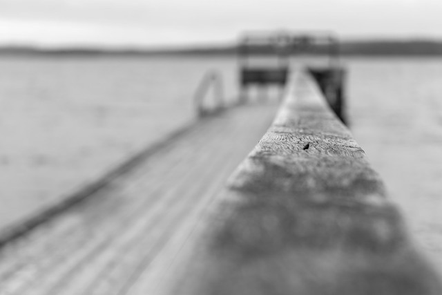 A shallow depth of field