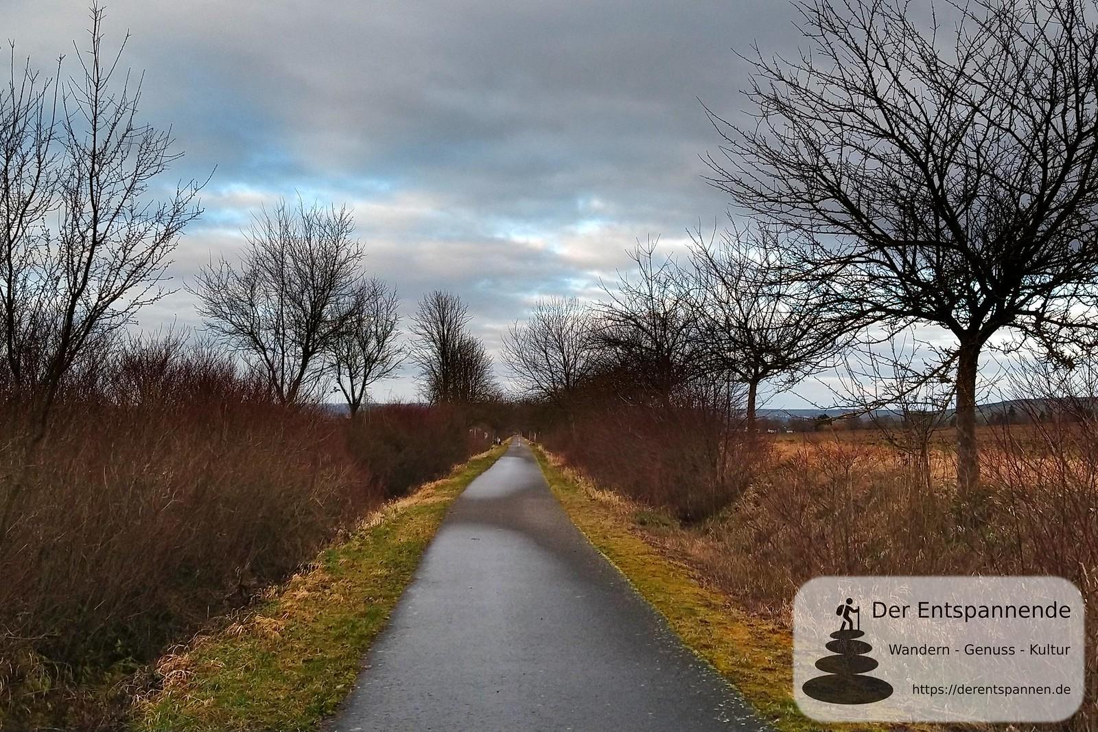 Blick zurück nach Selzen auf dem Radweg von Selzen nach Mommenheim, ehemalige Bahnstrecke Alzey-Bodenheim (Amiche)