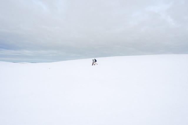 Walking in the fell