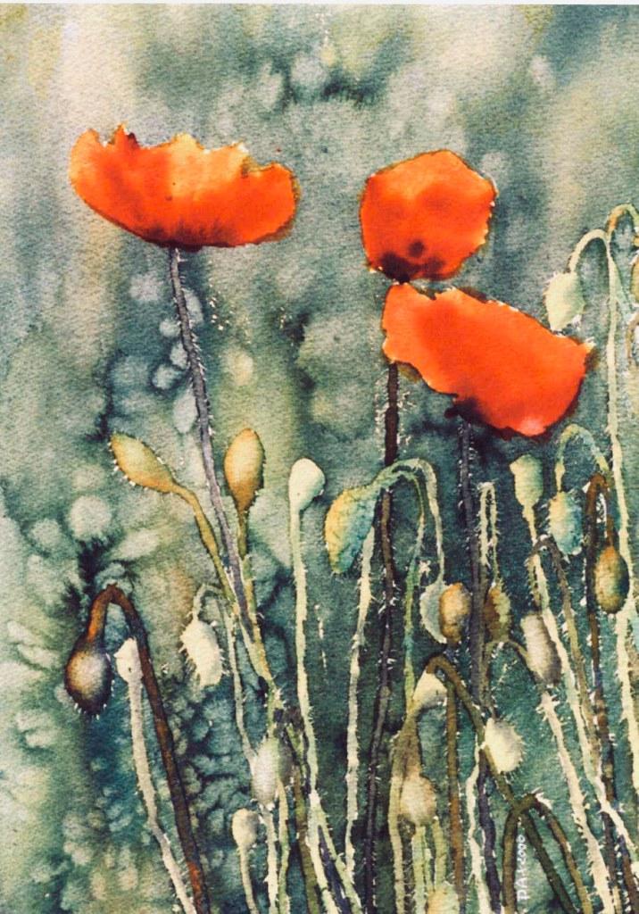 3 poppies