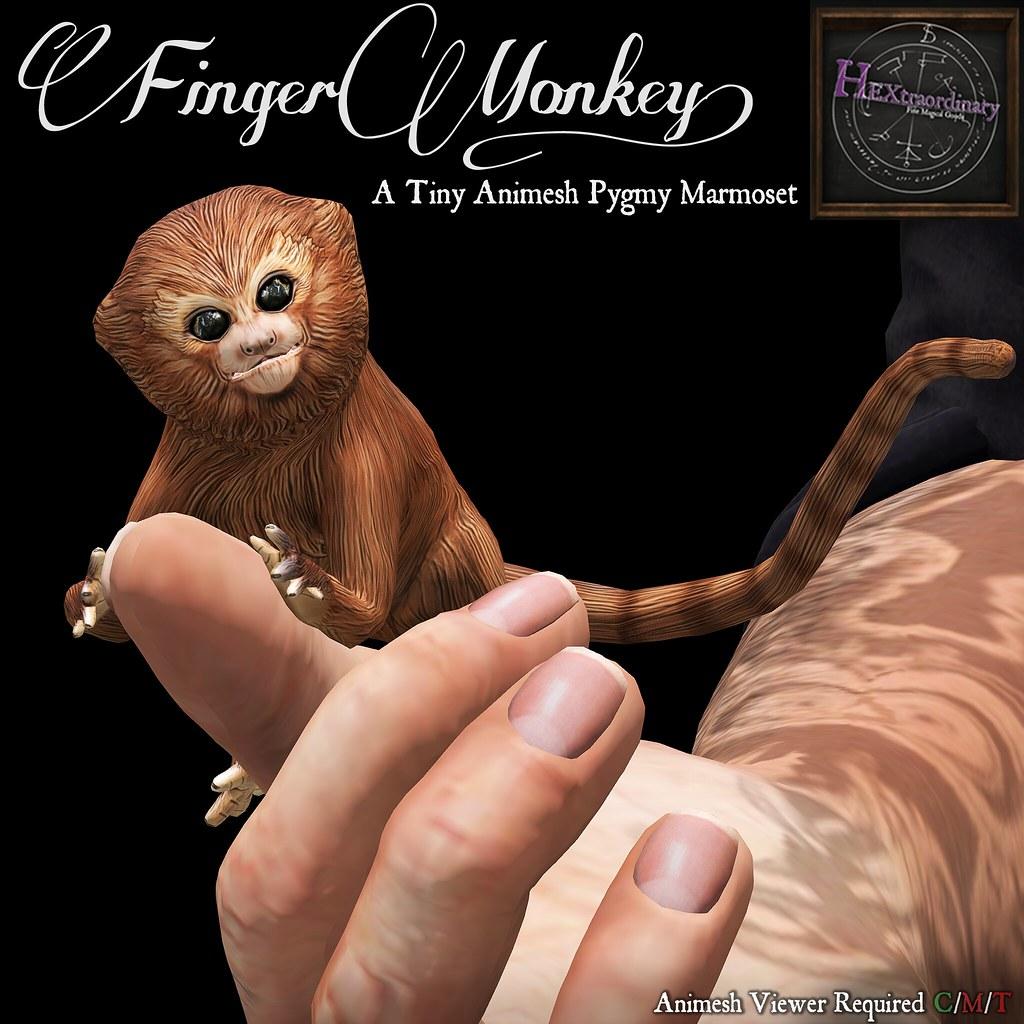 HEXtraordinary – Finger Monkey @HullabaZoo