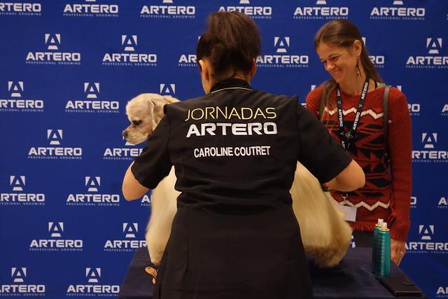 Photocall Jornadas Artero 2020