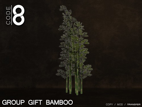 Bamboo Group Gift