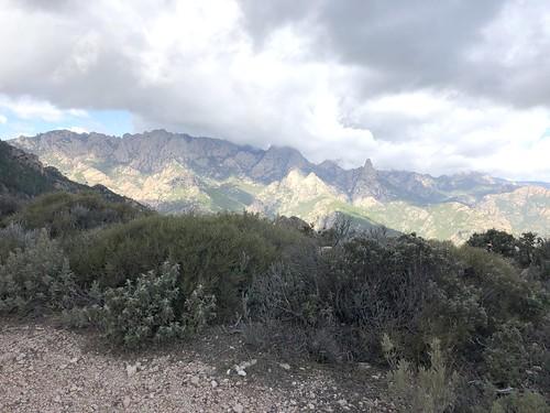 Sur la piste de Luviu, au-delà de l'extrémité du chemin démaquisé : vue panoramique sur le massif d'A Punta Bunifazinca