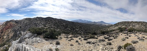 Nevada - Bootleg Spring in Lovell Canyon view panorama