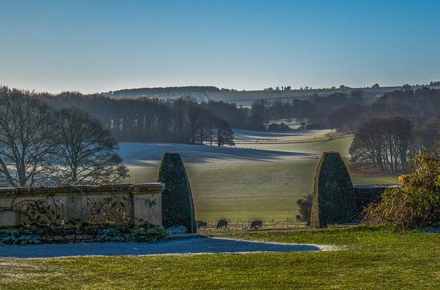 Frosty morning landscape