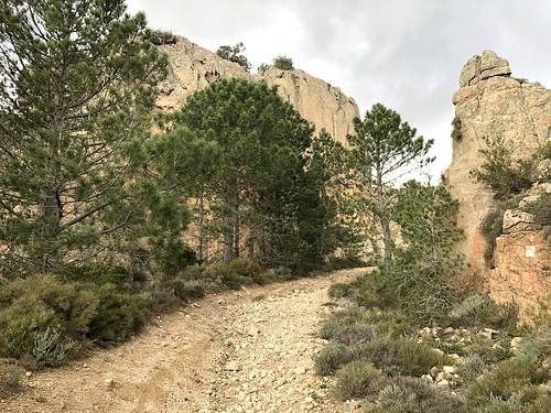 Sur la piste de Luviu, au-delà de l'extrémité du chemin démaquisé