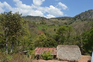Buenas prácticas agrícolas: Sistema agroforestal Kuxur Rum