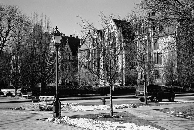 University of Chicago Quadrangle  2020/177