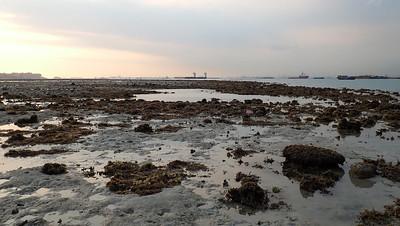 Boat strike at Beting Bemban Besar, Mar 2020