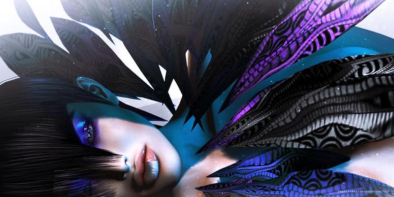 #115 - Feathers of paradise.