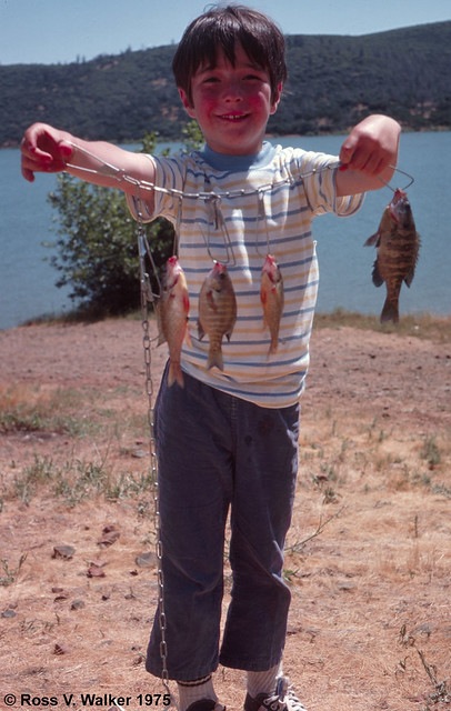 Brian's First Fish