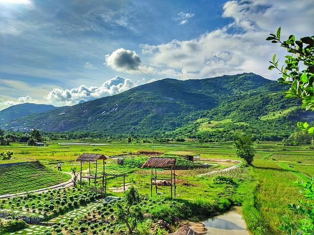 Phượt Hot - Phim trường Du Long điểm phượt mới ở Ninh Thuận (17)