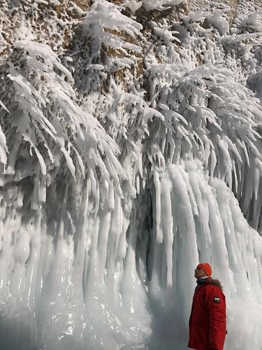 Sele en el Lago Baikal (invierno)