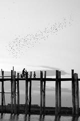 Bridge of hope~