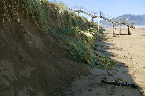Destrozos en las dunas de la playa de Zarautz por las mareas vivas