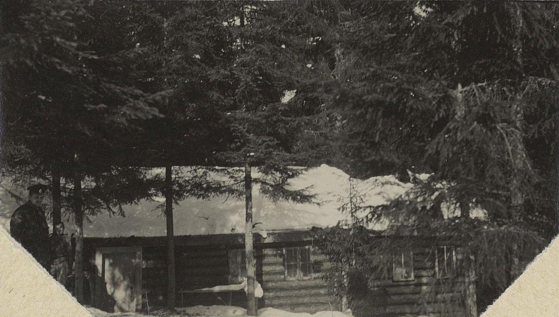 1915. Изба в лесу. Галиция