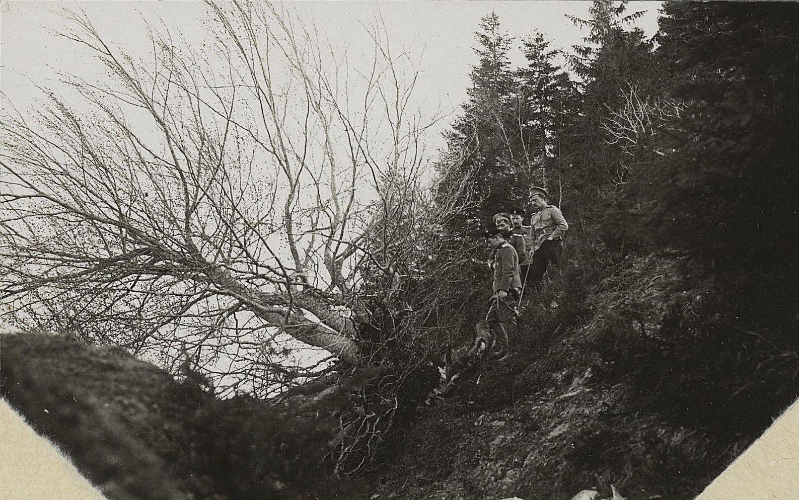 1915. Испытание бомбы. В лесистом овраге над сваленным деревом группа военных