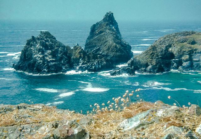 The wonderful Serpentine and Granite stacks of Kynance Cove, Lizard Peninsula, Cornwall.