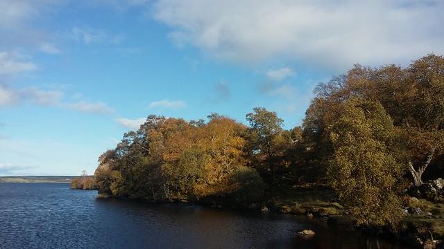 Autumn Colours, Loch Duntelchaig, near Dores, Oct 2019