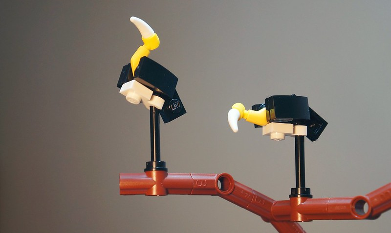 10 pieces Lego Lesser Adjutant (秃鹳 / Burung Botak) Parit Jawa, Muar. (Make use of the crack brown plate As diorama base :p
